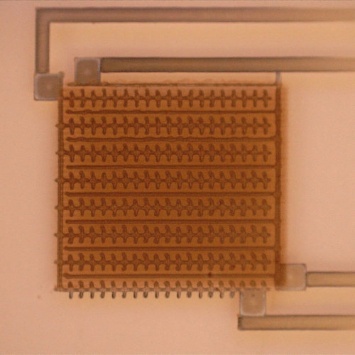 Micrograph Of A CdSe Photosensor