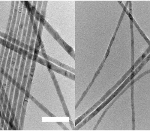 TEM Of 12 Nm CdSe Nanowires