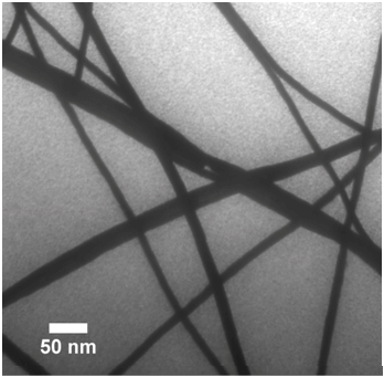 TEM Of CdSe Nanowires.