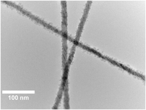 TEM Of CdSe-ZnS Core-shell Nanowires
