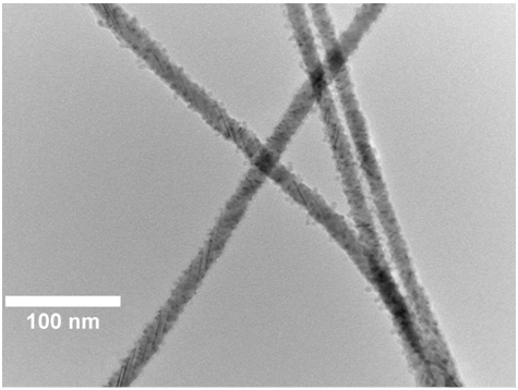 TEM Of CdSe-ZnS Core-shell Nanowires.