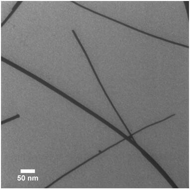 TEM Of 12 Nm Diameter PbSe Nanowires