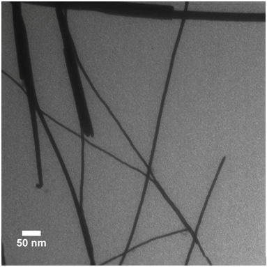 TEM Of 12 Nm Diameter PbSe Nanowires Showing Bundling